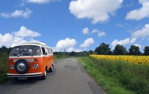 T2 Westfalia camper huren en rijden door de zonnebloemvelden van nederland